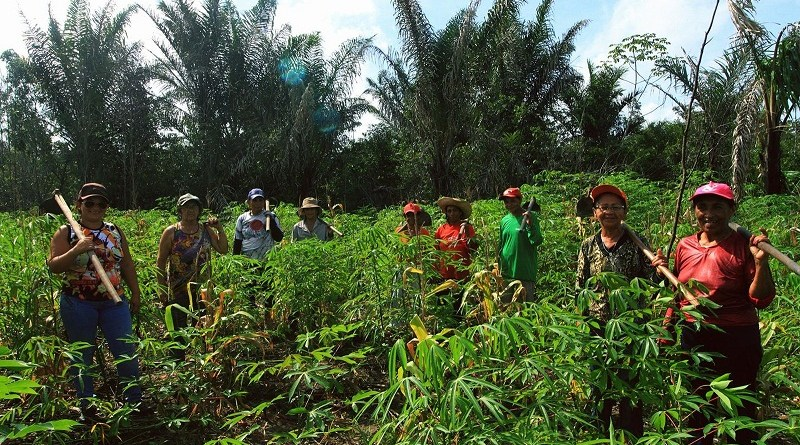 mulheres-agricultoras