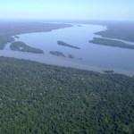 Flona Jamanxim -Câmara aprova MP que reduz área de floresta nacional em Novo Progresso