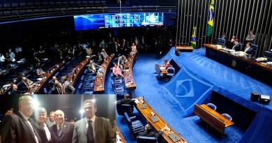 Plenário_Senado1