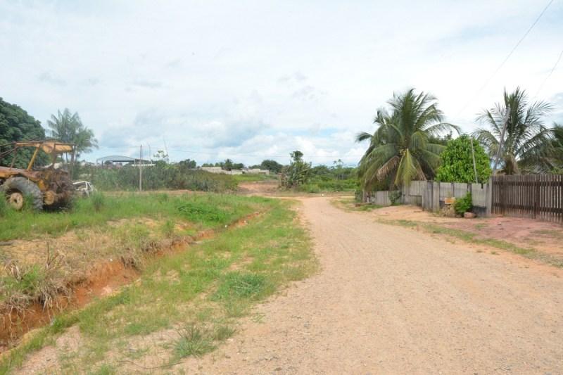 avenida brasil (2)