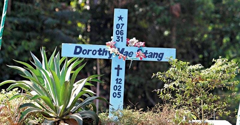 destaque-420302-dorothy
