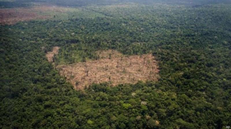 Desmatamento realizado pelo grupo comandado por Ezequiel Castanha