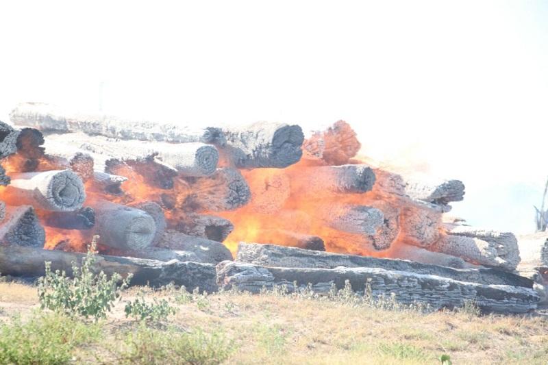 madeira fogo2