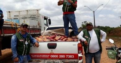 Uma equipe da Agência de Defesa Agropecuária do Pará (Adepará), da regional de Tucuruí, apreendeu na tarde desta terça-feira (3), no município de Novo Repartimento, 1.286 kg de polpas de frutas (foto) que estavam transitando de forma ilegal no município. Segundo os técnicos da agência, não havia registro e nem acondicionamento correto do produto. Após a apreensão, a carga foi destruída no local.  FOTO: ASCOM / ADEPARÁ DATA: 03.10.2017 NOVO REPARTIMENTO - PARÁ