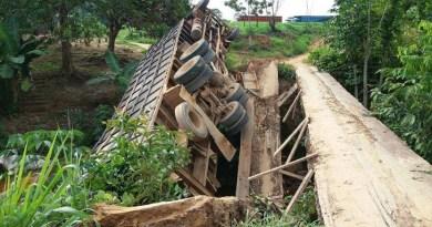 ponte vicinal bambuu