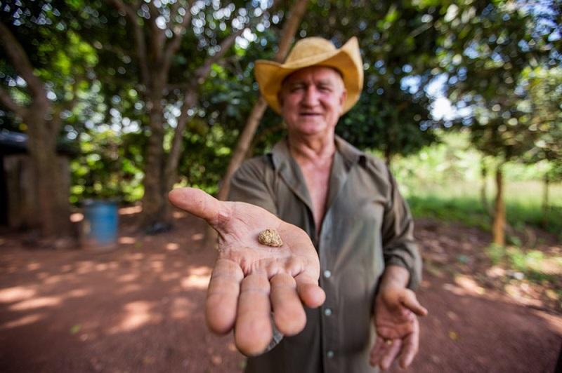 Segue até o dia 24 de fevereiro em um shopping de Parauapebas, sudeste do Pará, a exposição Esperança Dourada (Foto: Anderson Sousa)