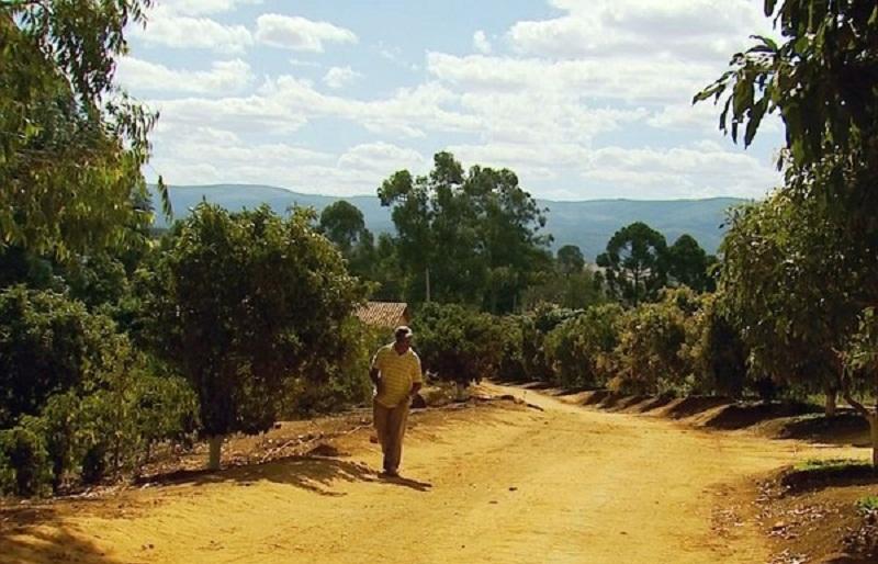 Trabalhadores eram mantidos em fazendas e não recebiam salários (Foto: Reprodução EPTV)