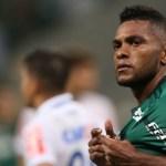 Palmeiras vence Mirassol e mantém invencibilidade no Paulistão