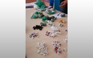 Entorpecentes apreendidos na Operação (Foto: Polícia Civil/Divulgação)