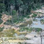 Operação Pajé Brabo- Garimpeiros usavam indígenas como testa de ferro- indígenas munduruku também exploravam ouro
