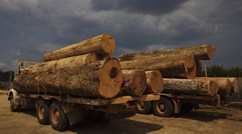 madeira np