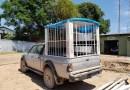 Demutran apreende caminhonete que fazia transporte de alunos em 'jaula'