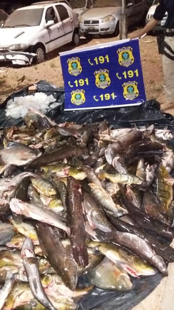 (Foto: Polícia Rodoviária Federal de Mato Grosso/Assessoria)