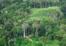 Amazônia brasileira abriga 453 garimpos ilegais, mostra estudo