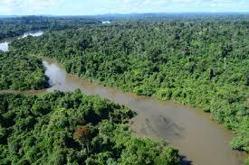 Rio Jamanxim (Foto:Arquivo)