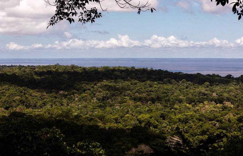 Floresta Nacional do Tapajós e o Rio Tapajós ao fundo —