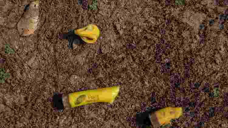 Cartuchos deflagrados de espingarda calibre .20 encontrados pela reportagem na ocupação da fazenda 1.200 Imagem: José Cícero da Silva/Agência Pública
