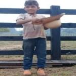 Menino de 13 anos morre com derrubada de arvore em Novo Progresso