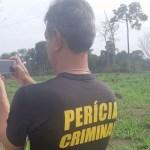 Peritos do Centro de Perícias Renato Chaves estão em Novo Progresso para atuar em incêndios criminosos