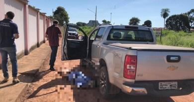 Pecuarista caiu ao lado da caminhonete. — Foto: Polícia Civil