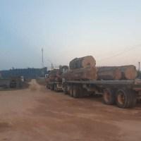 Operação Verde Brasil 2, base de Novo Progresso apreende três caminhões de madeira que estava em transporte irregular.