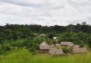Justiça Federal declara nulidade de instrução normativa que favorecia grilagem de terras indígenas