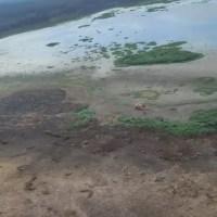 Corpo de piloto Paraense é resgatado de área de difícil acesso 3 dias após queda de helicóptero no Pantanal Mato-grossense