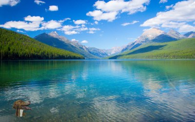 Yellowstone and Glacier National Parks