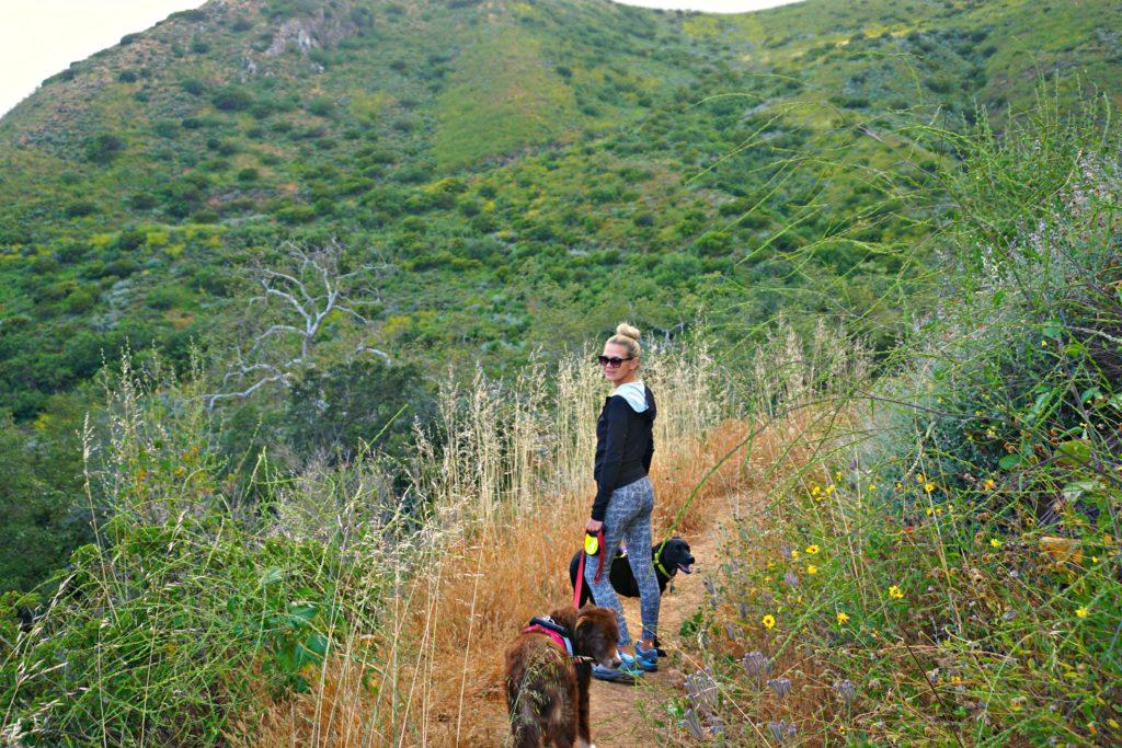 5 Free Things To Do In Malibu California Follow Your Detour