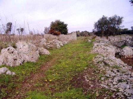 fig-3-strada-rurale-che-fiancheggia-a-nord-est-il-sito-di-cellino