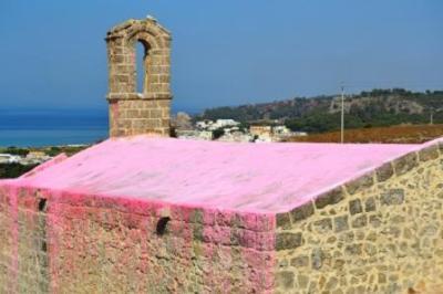 sanmauro-pink