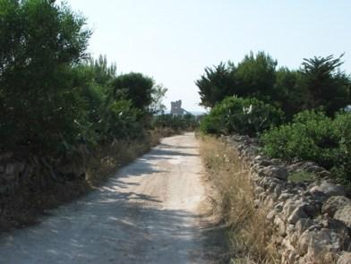 """Sarparea, l'antica """"viam ecclesie Sancte Marie de Cisaria"""" (ph. F. Suppressa)"""