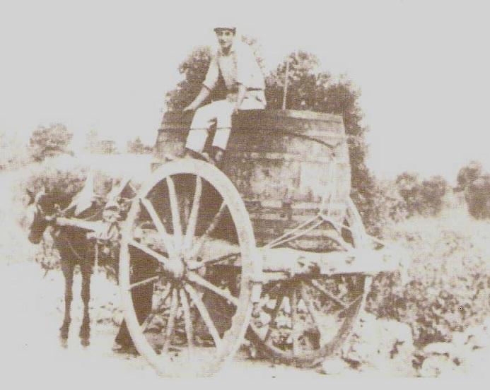 immagine tratta da http://www.nontantotempofa.com/Foto/Vendemmia.jpg