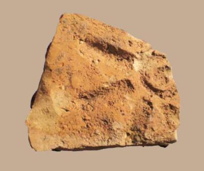 5.Agliano, un ritrovamento recente (2008) dagli scavi condotti dalla Coop. Museion