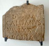 Storia della ricerca e della scoperta della città romana di Genusia