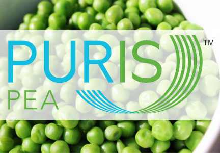 FDA has no objection to pea protein\u0027s GRAS status Food Business - has no objection
