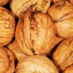 walnuts-in-a-shell.jpg
