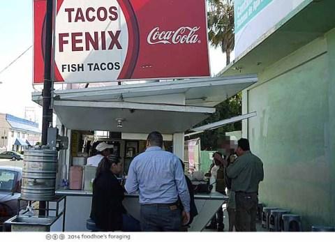 ens_fenix_truck