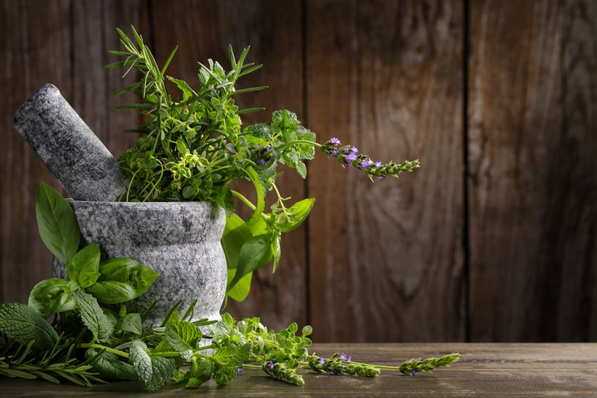 Zen Quote Wallpaper 8 Of The Best Herbs And Spices For Natural Healing Food