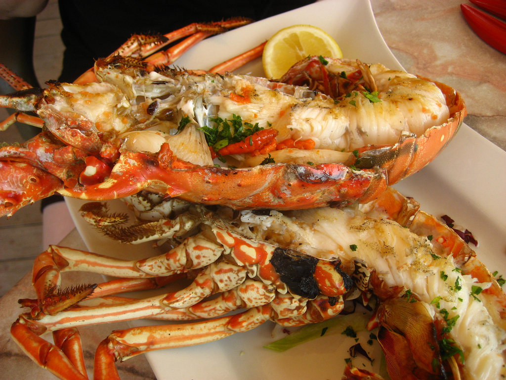Simple Grilled Whole Lobster Recipe – Food Republic