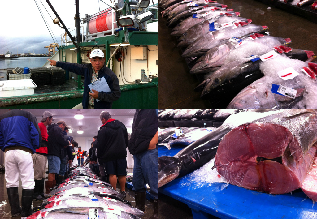 At the honolulu fish auction it s like storage wars but for Honolulu fish market