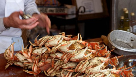 10 Things You Should Know About Dungeness Crab, Currently In Season