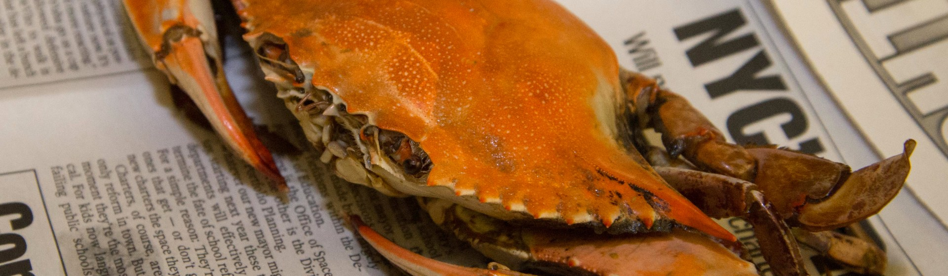 how to eat blue crab video