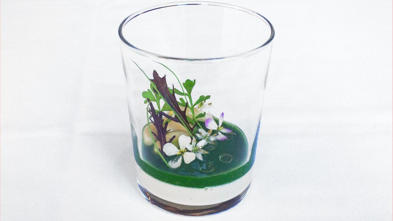 Plate Deconstruction: Castagna's Cipollini Onion Custard Terrarium