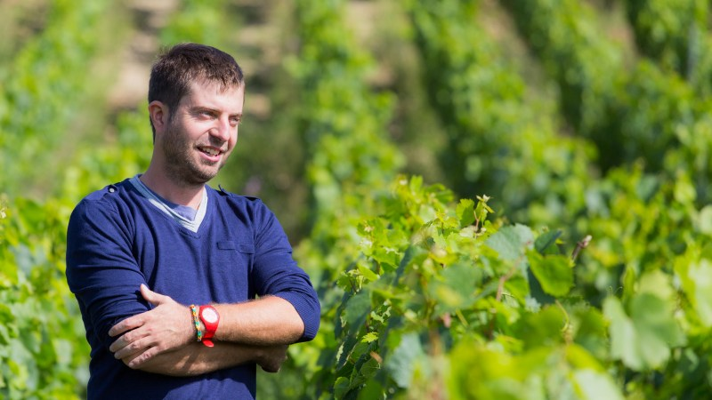 33-Year-Old Winemaker Thomas Pico Is The Future Of Natural Wine In Chablis