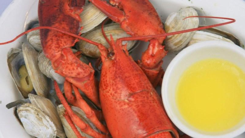 lobster_anchor