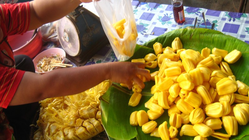 bagging jackfruit segments by  neajjean
