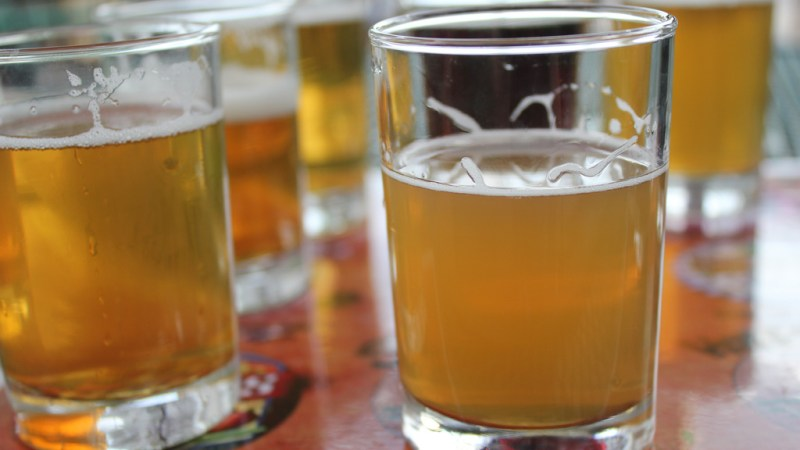 An Israeli brewery made a beer with a 2,000-year-old strain of wheat. (Photo: quinnanya/Flickr.)