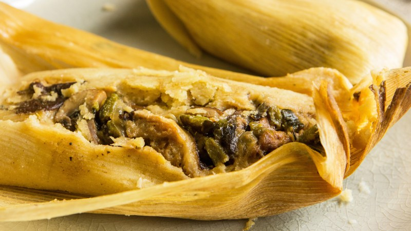 mushroom and poblano tamales recipe