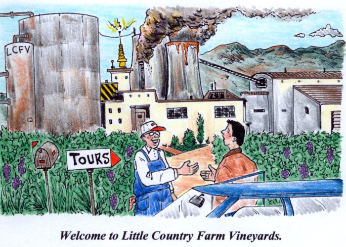 Welcome to Little Country Farm Vineyards.